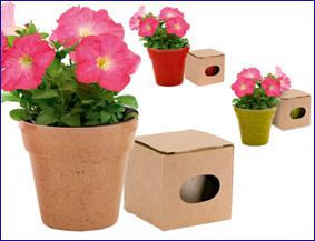 Macetas flores petunias regalos ecologicos originales - Macetas originales para plantas ...
